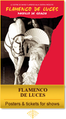FLAMENCO DE LUCES - Posters and tickets for shows